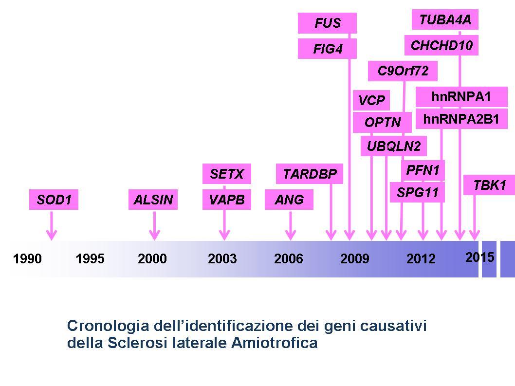 Cronologia-geni-SLA