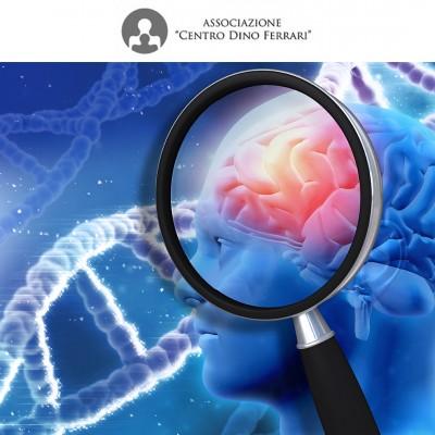 CDF_Studio Genetica